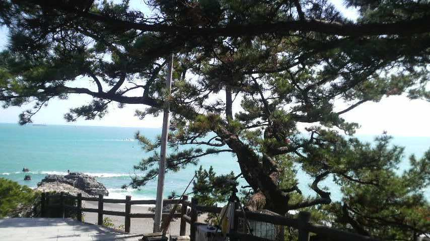 龍馬像付近から見る桂浜 この日は穏やかでしたが、地震の影響で浜には下りられませんでした。